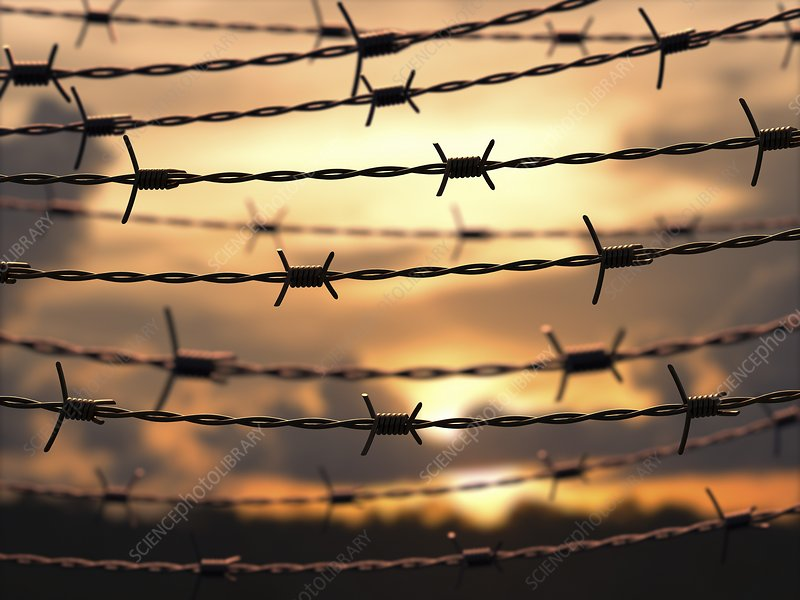 Barbed wire, artwork