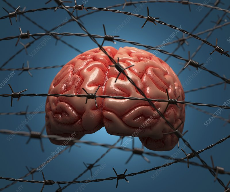 Brain and barbed wire, artwork
