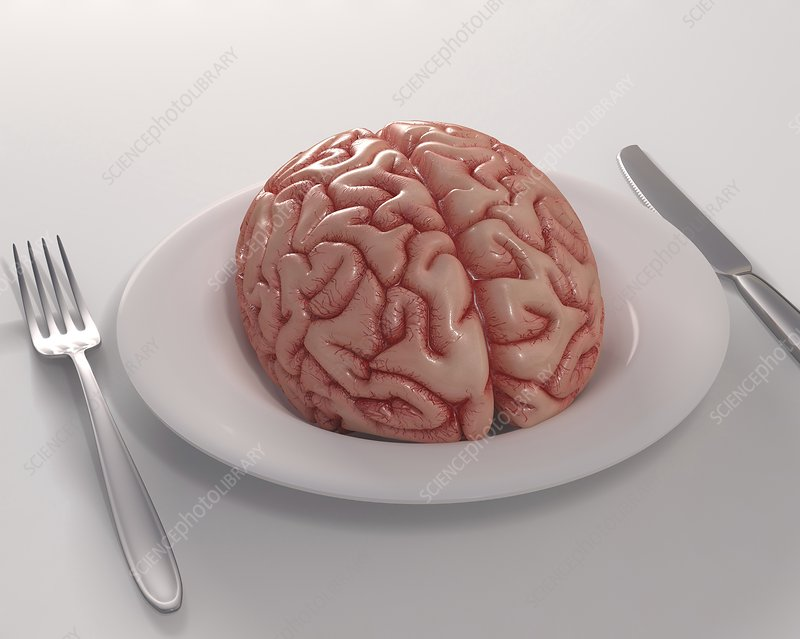 Human brain on dinner plate, artwork
