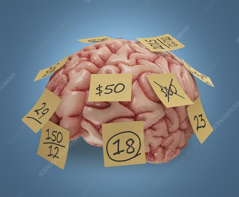 Human brain with sticky notes, artwork