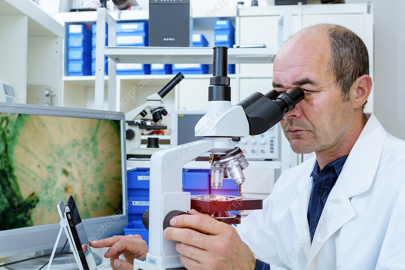 Man using a Lab microscope