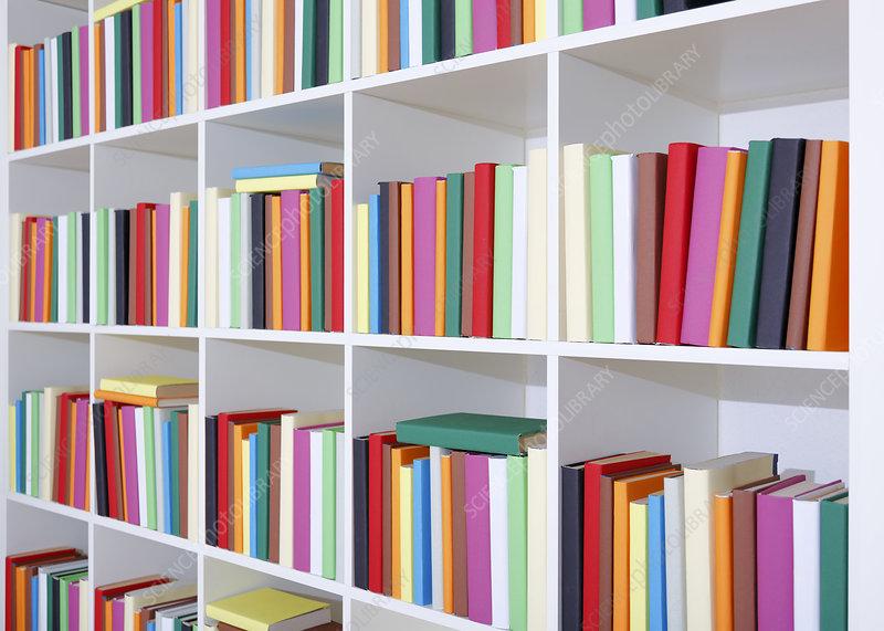 Colourful books on a bookcase