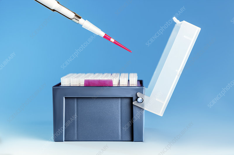Pipette and medical samples in a box