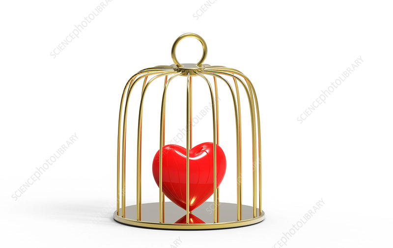 Red heart inside a bird cage