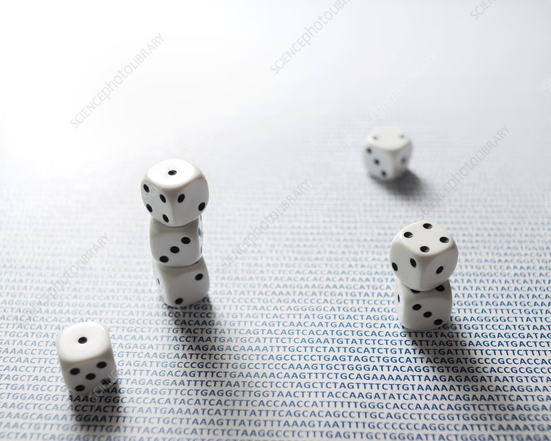 Dice and DNA