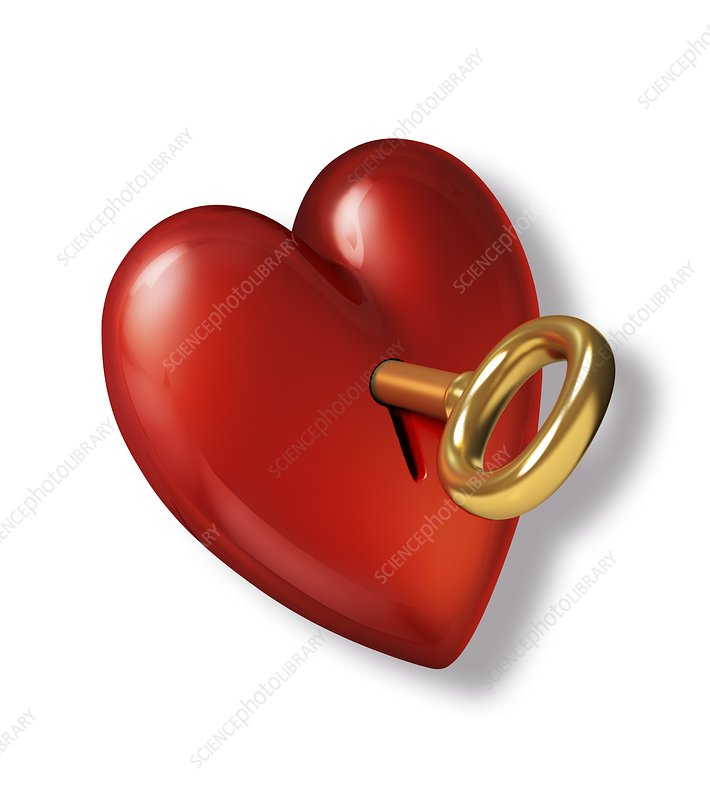 Red heart shape with a gold key, artwork