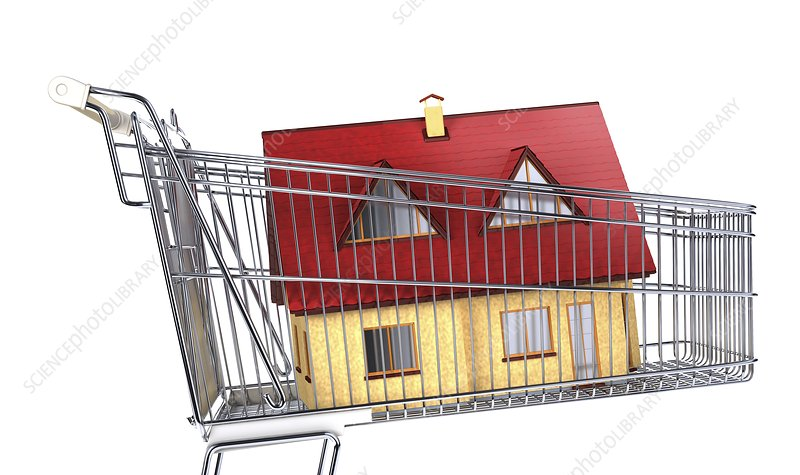 House inside a shopping trolley