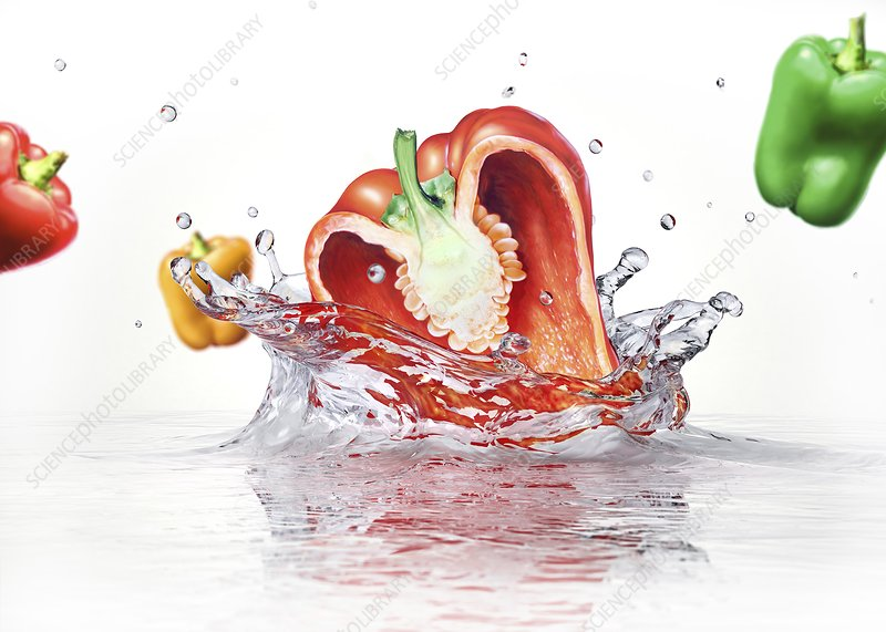Peppers splashing into water, artwork