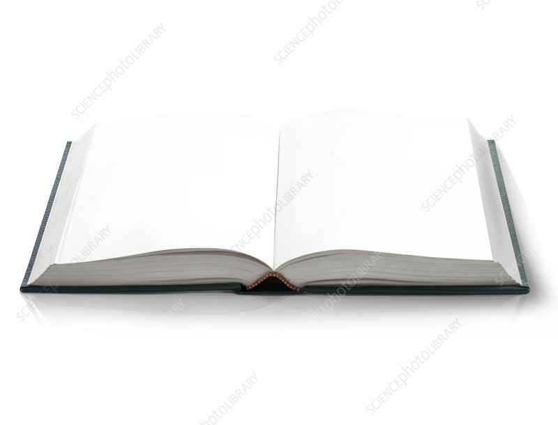Blank open book, artwork