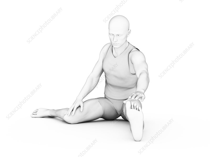 Person stretching, illustration