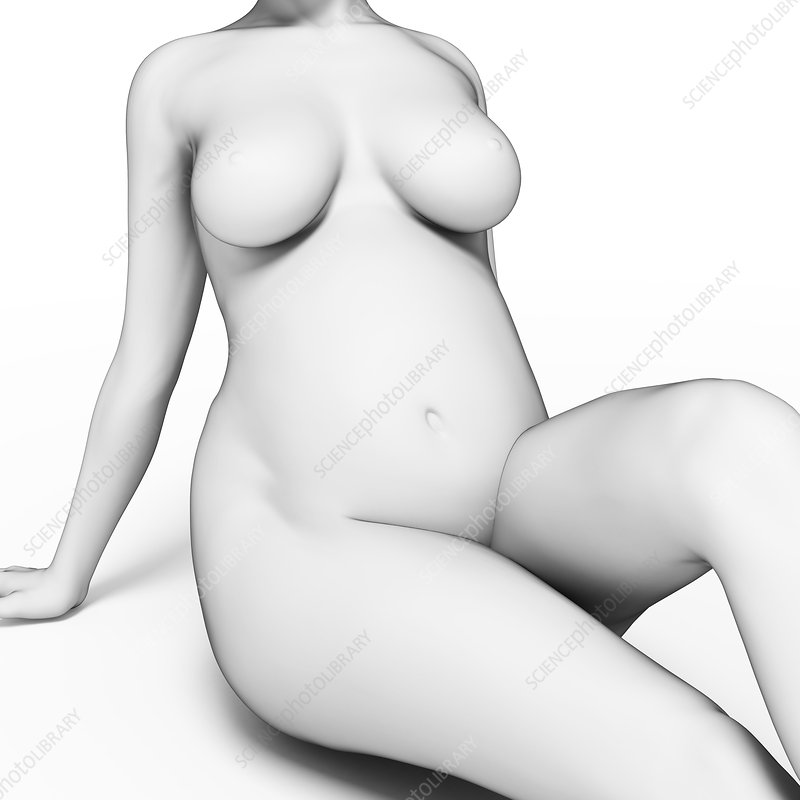 Pregnant woman, illustration