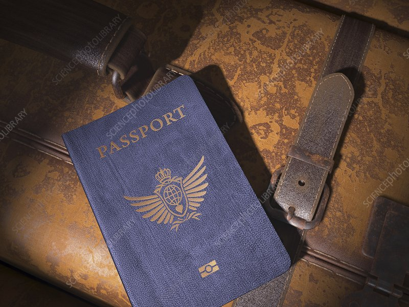Passport and suitcase, illustration