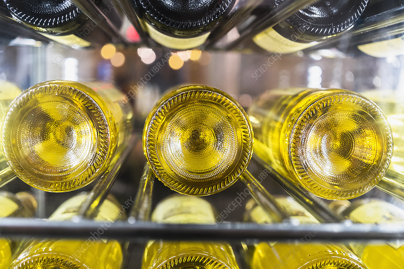 White wine bottles on a rack in a cellar