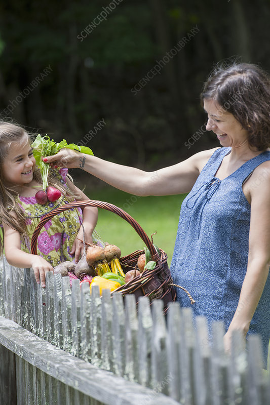 Mother and daughter picking vegetables