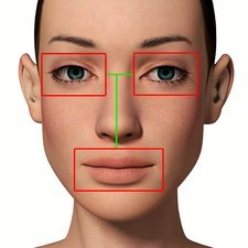 Female head with biometric markers