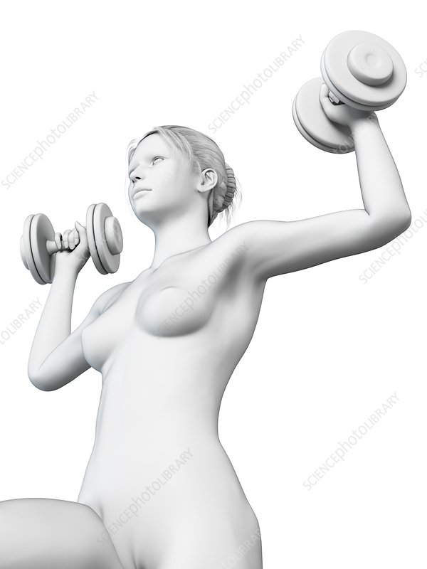 Woman weight training, illustration