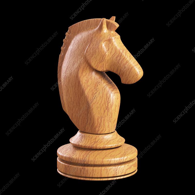 Knight chess piece, illustration