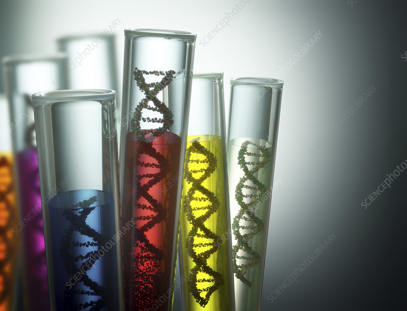 Test tubes containing DNA, illustration
