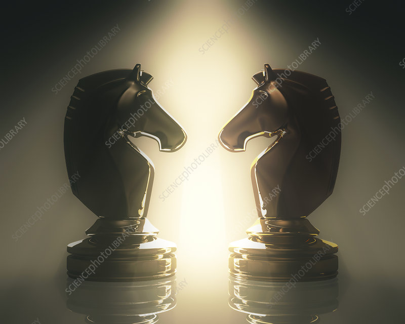 Knight chess pieces, illustration