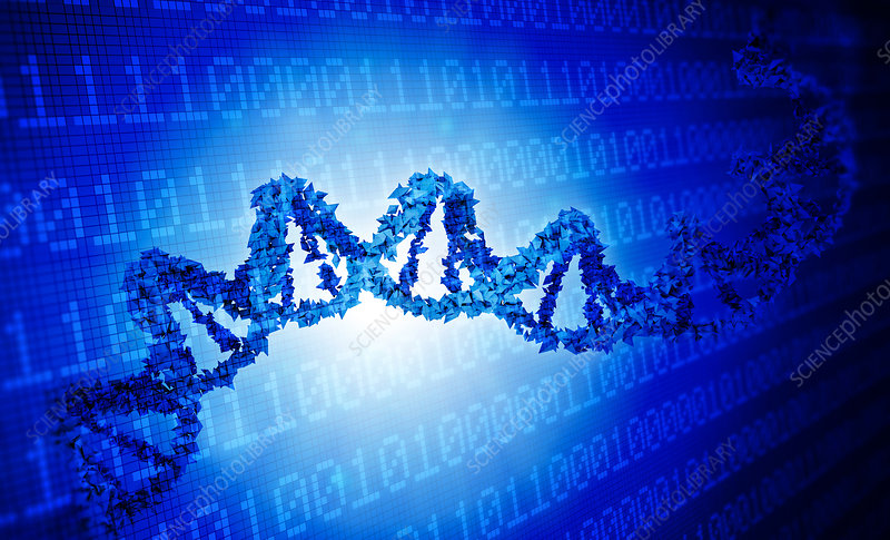 DNA and binary code, illustration