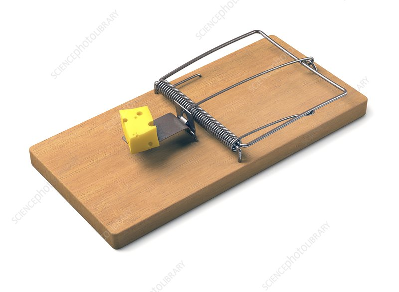 Mousetrap with cheese, illustration