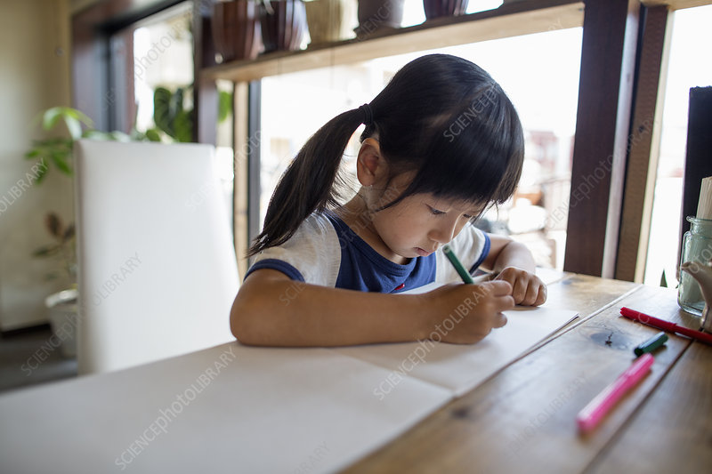 Girl drawing with felt tip pens