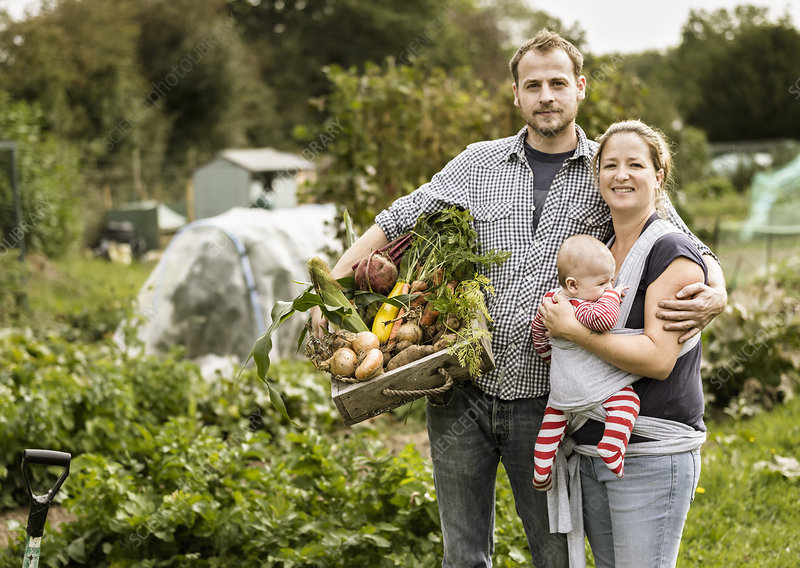 Young family standing in their allotment