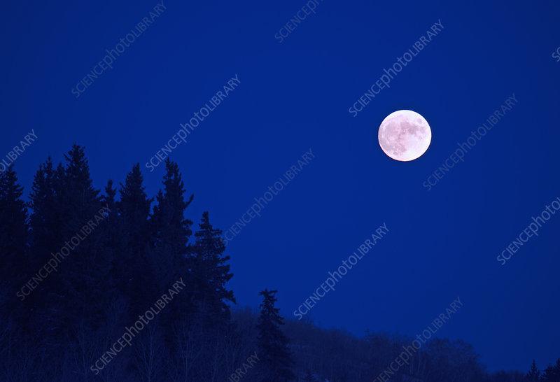 Full moon in a dark blue night sky