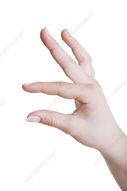 Human hand in a measuring gesture