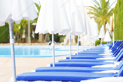 Sunloungers and parasols in a row