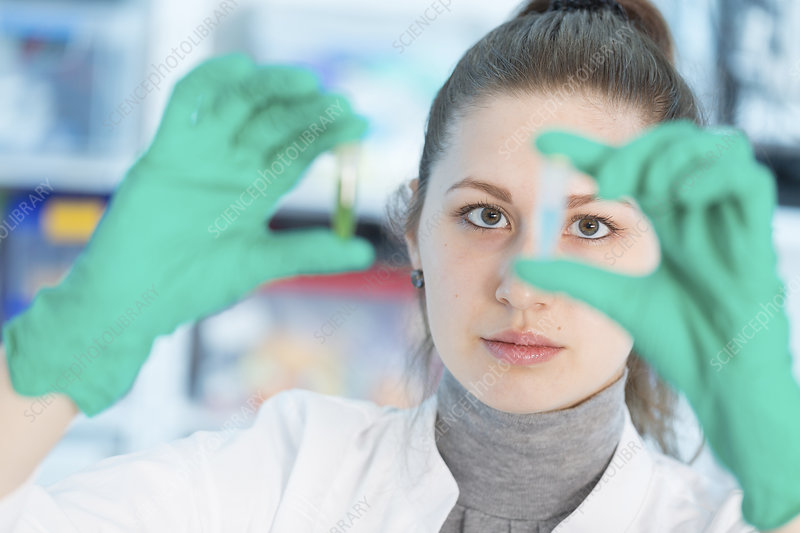 Lab assistant holding samples