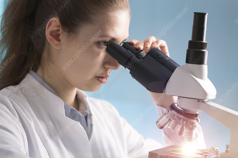 Student using microscope in lab