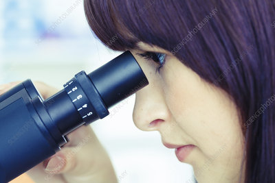 Lab assistant using microscope