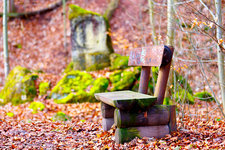Empty bench and autumn leaves