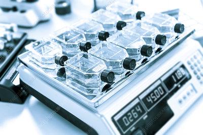 Glass bottles in lab