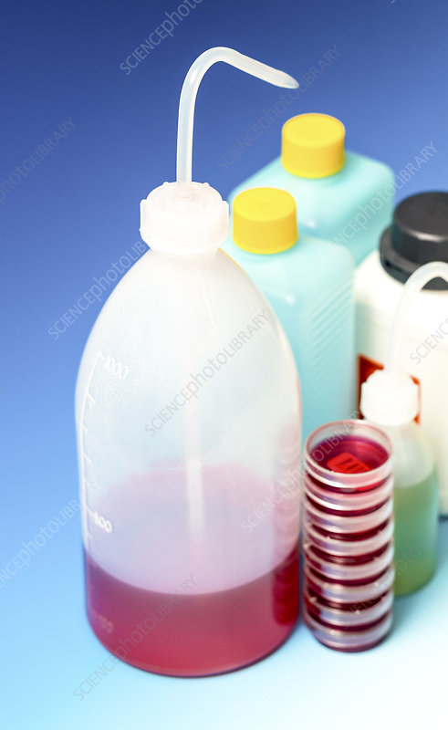 Plastic dispensing bottles and containers