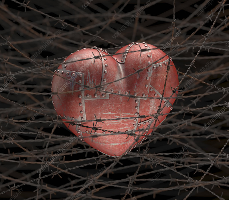 Heart with barbed wire illustration stock image f