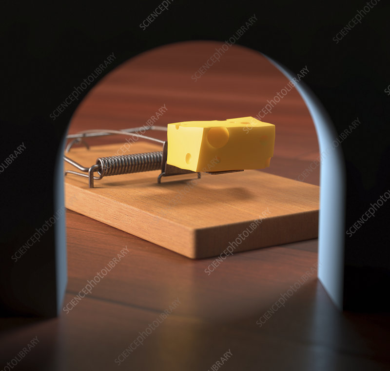 Mouse trap through a hole, illustration