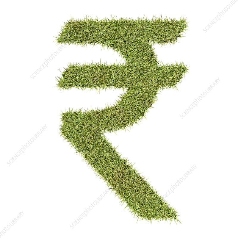 Rupee symbol made from grass