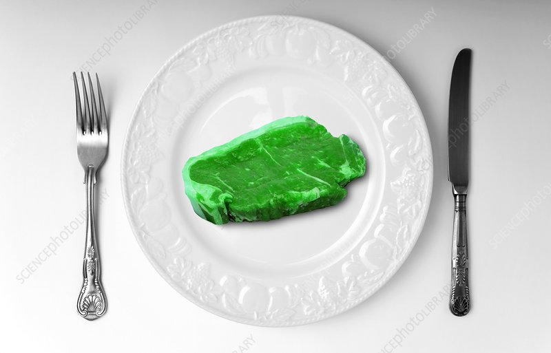 Green meat on white plate