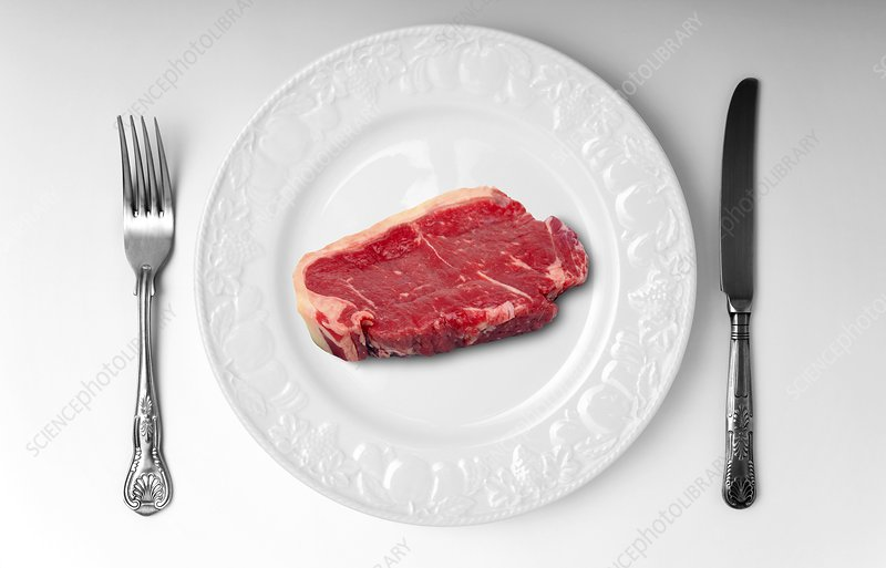Raw meat on white plate
