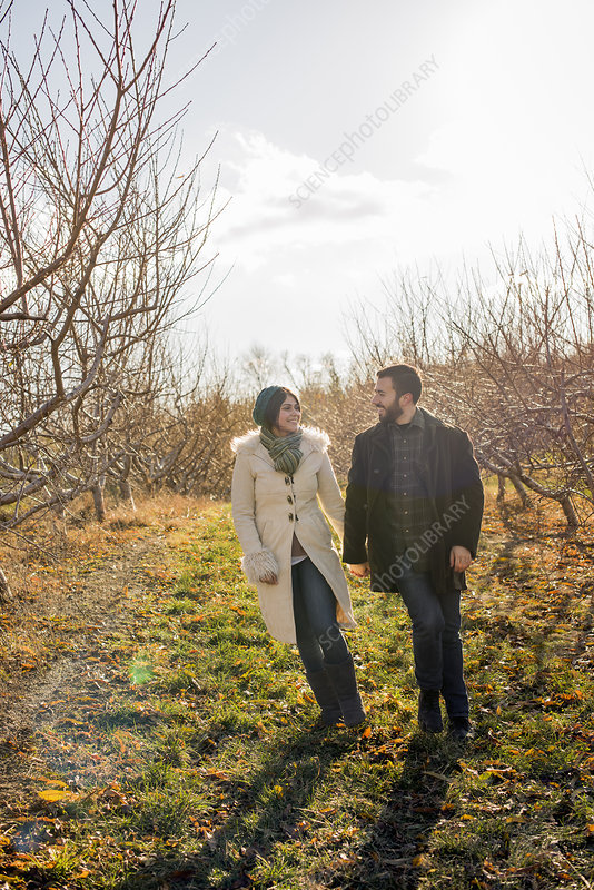 Two people walking in an orchard