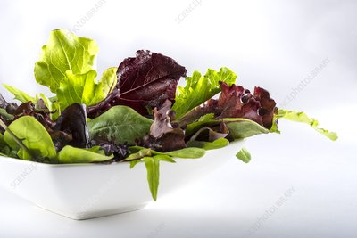 Salad leaves in white bowl