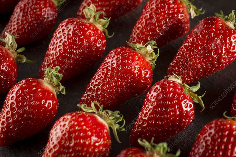 Gariguette strawberries