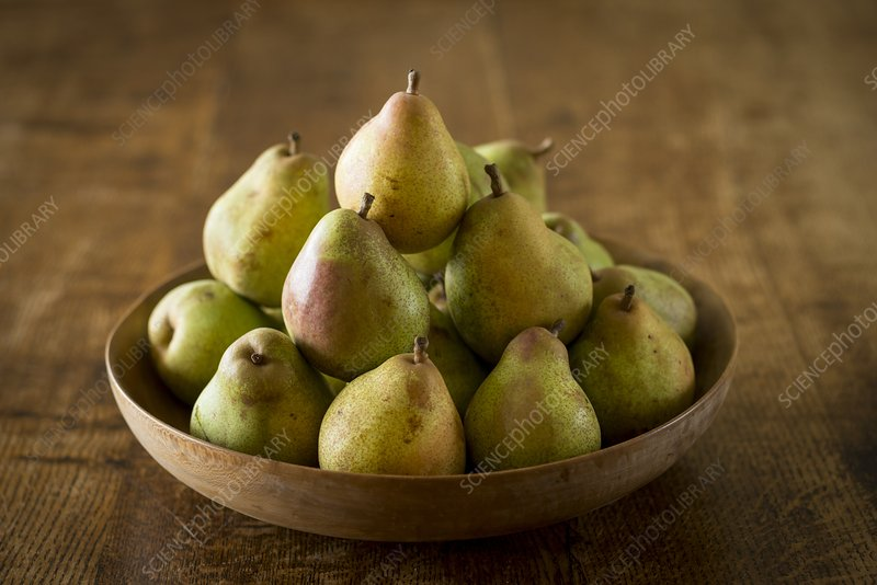Comice pears in bowl