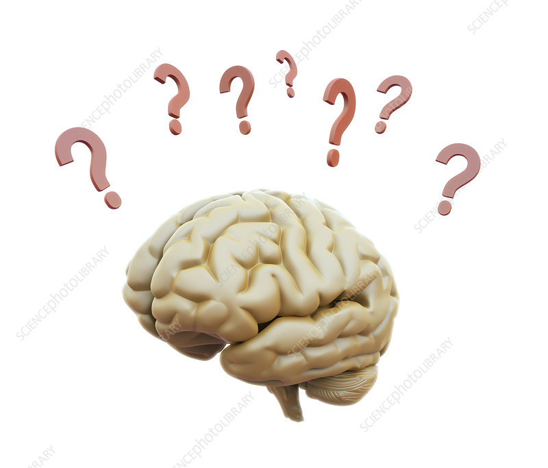 Human brain and question marks