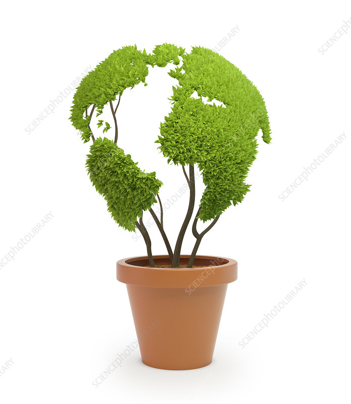 Pot plant in shape of Earth, illustration