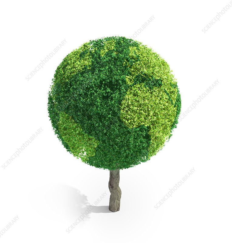 Tree in shape of Earth, illustration