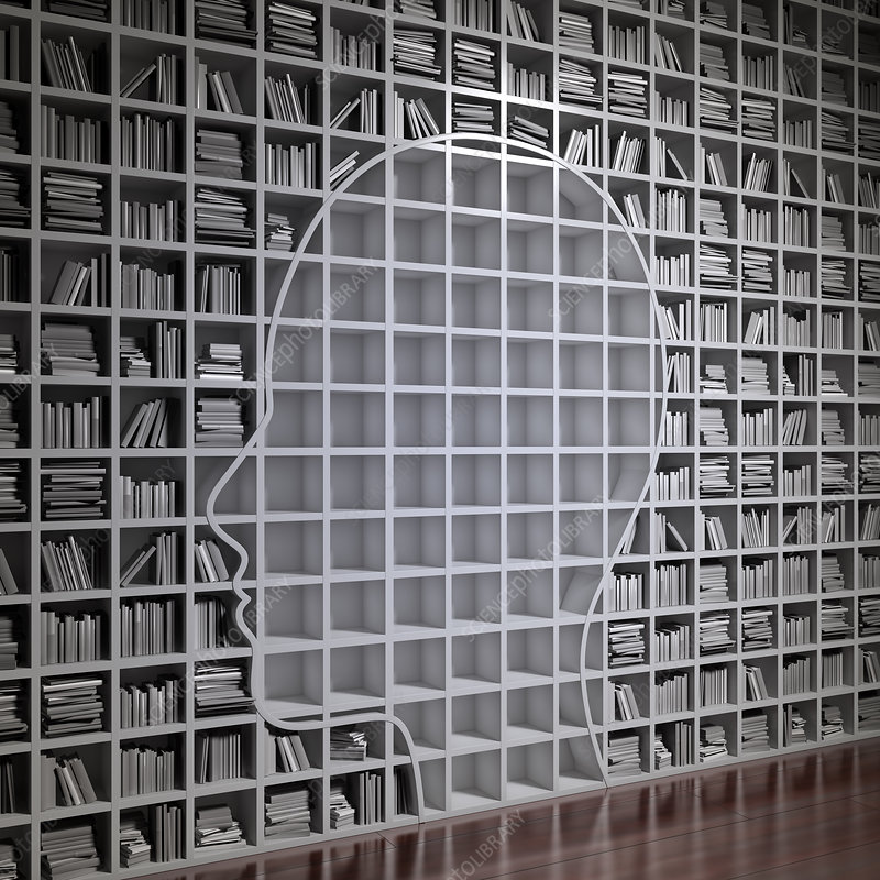 Bookshelf with the shape of human head