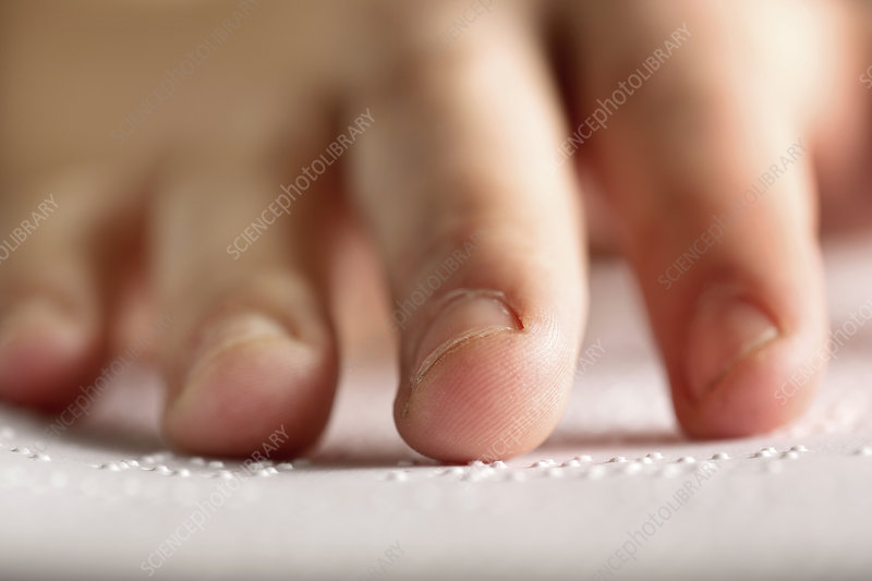 Fingers touching braille